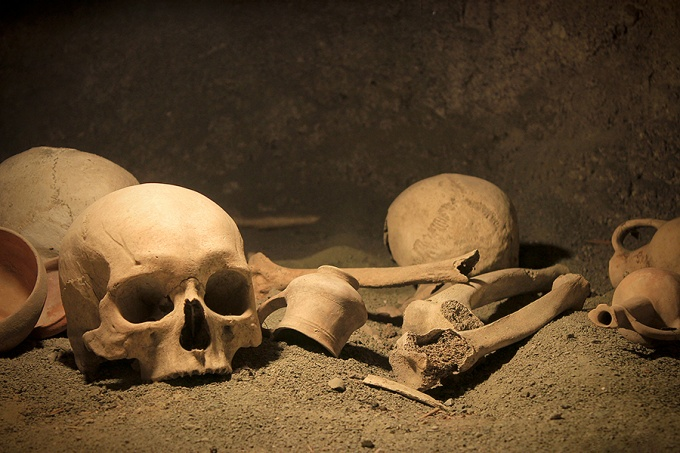 Skulls pictured in an archeological dig site