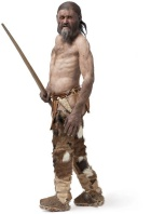 A rendering of Otzi the Iceman.