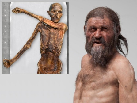 A reconstruction of Otzi the Iceman, with an inset photo of his mummified body.