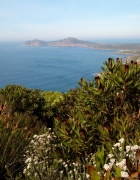 Cape Point Nature Reserve in South Africa.